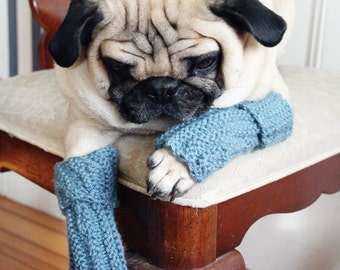 Snuggly Dog Leg Warmers - Pug Leg Warmers - All You Need is Pug - Dog Clothing - Pet Clothing - Dog Clothes