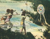 Vintage, 1950's, Florida, United States,  Silver Springs, Underwater, Archery, Swimming, Sport, Postcard, Collectible, Ephemera