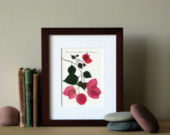 "Pressed flower print, 8"" x 10"" matted, Bougainvillea flowers, green leaves, botanical decor, no. 011"