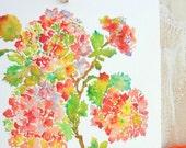 Holiday Hydrangeas, Fine Art Print Watercolor Hydrangeas, 8x10, 11x14, Watercolor Flowers