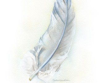 Feather Watercolor Painting Gray Fine Art Print 11 x 14