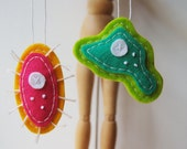 Merry Microbial Christmas Ornaments - Amoeba and Paramecium Biology Decor - Microbiology Science - Specimen Curiosities