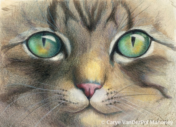 """Green and gold eyes of a tiger striped tabby cat, close up, gift for animal lover - Art Reproduction (Print) - """"A Closer Look"""""""