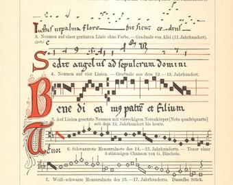 1904 Development of Musical Notation Original Antique Engraving