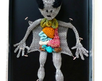 Knitted Alien Autopsy DIY Kit