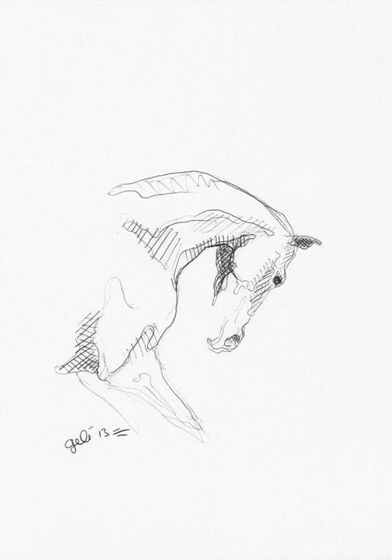 Original Sketch 207 of a Galloping Horse