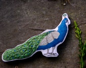 Peacock Pillow toy. Hand-painted soft sculpture bird by AlyParrott on Etsy. Made to order.