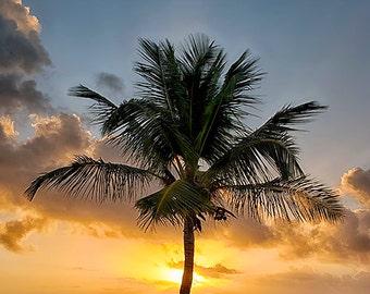 Key West Smathers Beach at Sunrise - Available Sizes: (5x7) (8x12) (12x18) (16x24) (24x36)