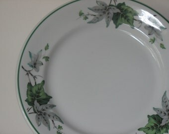 Shenango Ivy Glen 4 Pieces Restaurant China Restaurant Ware Wedding China