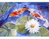 Koi Painting Original Watercolor Fish Art Waterlilies 14x20 by Janet Zeh