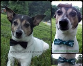 Dress Up Your Pet with a BowTie for Your Dog or Cat. Choose From Over 400 Bow Ties in my Listings or Stylish Black - U.S.SHIPPING ONLY 1.99