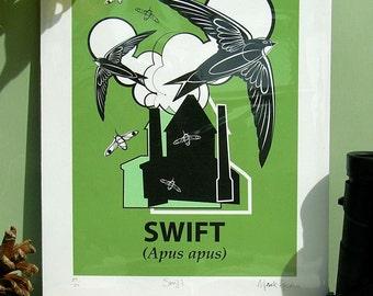 Small Limited Edition Swift (Apus apus) Giclée Print