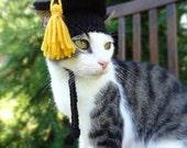 Graduation Cap for Cats, Graduation Cat Hat, Graduation Hat for Cats - The Graduate's Cat Cap