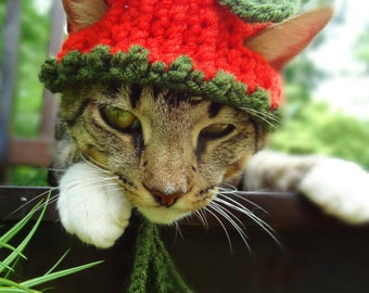 Pumpkin Cat Hat - The Pumpkin Halloween Costume for Cats and Small Dogs - Pumpkin Cat Costume