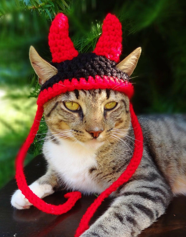 devil cat hat devil cat costume devil horns for cat devil