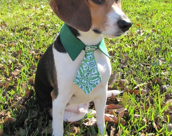 Dog/Cat Celtic knot necktie/bowtie on a green shirt style collar