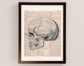 Vintage Skull Print - Anatomy Art - Print on Vintage Dictionary Paper - Doctor Gift - Medical School