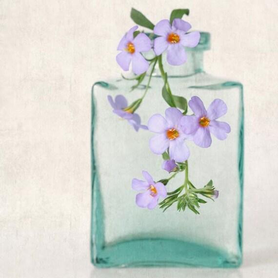Flower Photography, Botanical Print, Fine Art Photograph, Spring Flower Photo, Botanical Wall Art, Shabby Chic, Blue Bacopa Flowers