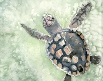 Loggerhead sea turtle watercolor giclee print, cottage chic home decor, matted 12x16 inches, archival inks for the look of an original