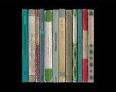Kate Bush Hounds of Love Album As Penguin Books Poster Print