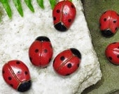 Pottery Ladybug / ONE or Multiple Discount / Sculpted Hand Crafted / Ceramic Ladybug / Fairy Garden / Moss Garden Decoration / Ladybird