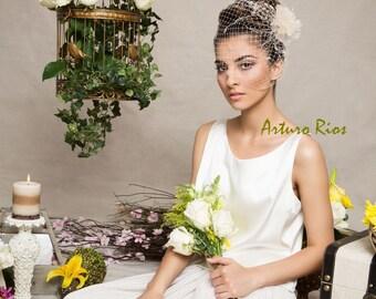 Vintage inspired birdcage Veil headpiece, Champagne wedding veil, wedding fascinator, Veil