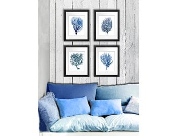 Blue Coral print Set of 4 Sea Coral art prints beach decor wall art coastal decor art antique natural history GnosisPictureArchive