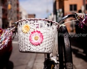 Bicycle Basket, Brooklyn, NY  - Fine Art Print 8x10