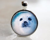 Arctic Seal - Winter Glass Pendant in Silver Bezel Setting - 25mm or 1 Inch round