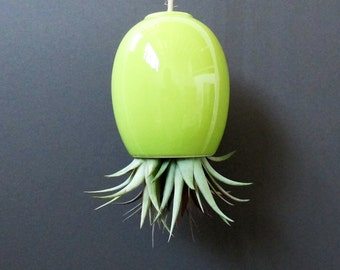 SALE - large green hanging airplant pod planter (tm)