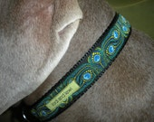 Pretty as a Peacock Collar