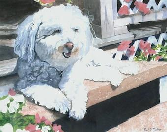 Bichon Frise Dog Art Print of my watercolor painting pet portrait