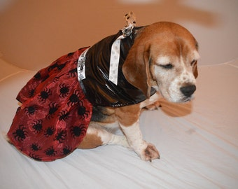 Shiny black PVC vinyl and red sheer with spiders medium to large dog dress, Halloween