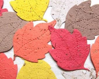 150 Plantable Seed Paper Leaves - Natural Woodland Wedding Favors - Maple Tree Leaf - Birch Leaf - Oak Leaves Forest Wedding Party Cards
