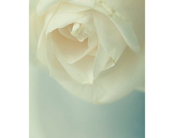 White Rose Photography,  Shabby Chic Wall Decor, Flower Art, Rose Wall Art, Bedroom Decor, Pastel Decor