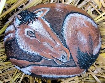 Little Brown Pony