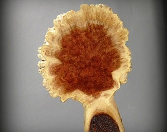 Wall Hanging - Tree Shape - Red Mallee Burl  (WH09)