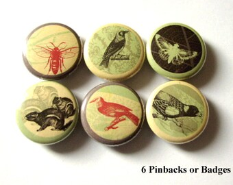 Button PIns Woodland Creatures Squirrel Birds Bee Moth Crow pin backs retro party favors stocking stuffers gifts nature forest magnet badges