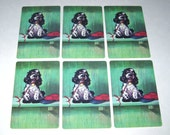 Vintage Playing Cards with Albert Staehle Butch Cocker Spaniel Dog on Shelf by Baseball Cap Set of 6