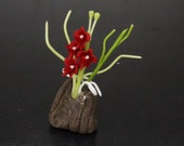 Dollhouse Miniature Handmade Clay Miss Joaquim Orchid Flower Flora