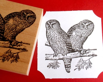 Owl Bird Rubber Stamp - Handmade by Blossom Stamps