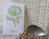 20 Wedding Favors - Wildflower Seeds - Hydrangea Hand Stamped packets