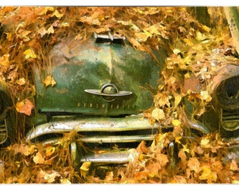 Old Olds (Vintage Cars - Old car city - Leaves - Rust - Oldsmobile - Antique - Wall Decor)