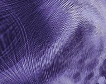 Feathers Electric Iris Purple Benartex Fabric 1 yard