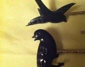 5 Little Bird Bobbies