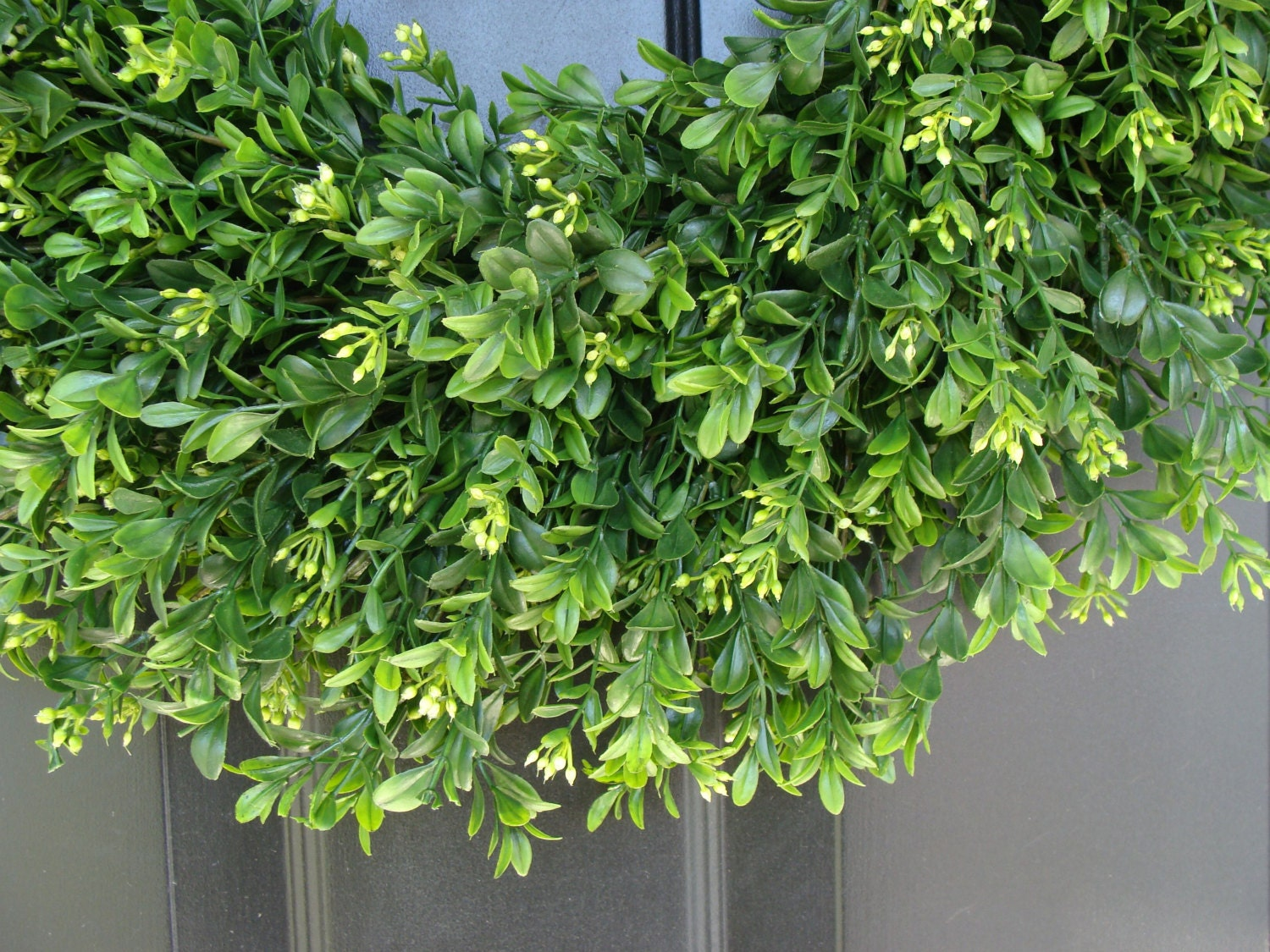 Artificial Boxwood Wreath For Sale - Summer wreath sale faux thin artificial boxwood wreath storm door wreaths front door outdoor wreath front door decor sizes 14 24 inch a