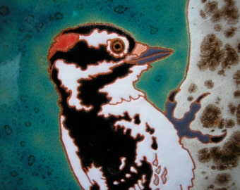Male Downy Woodpecker tile, CUSTOM ORDER - 4-6 wks production time-gift for birder, kitchen,bath,fireplace surround