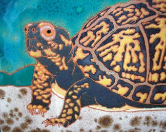 Box Turtle tile, CUSTOM ORDER - 4-6 wks production time,  Arts and Crafts, , birders,kitchen,bath,fireplace surround or framed