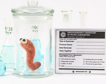 Felted Appendix w/ Personalized Specimen Label - Quirky Get Well Gift