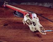 Electric Guitar Real Skull